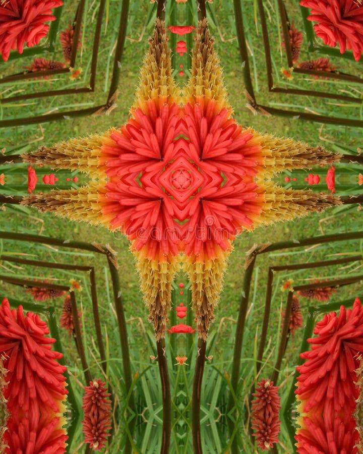 Cruz do estouro da flor ilustração do vetor