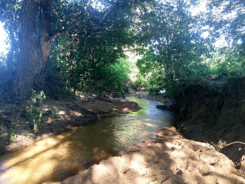 Cruz do rio o campo fotografia de stock