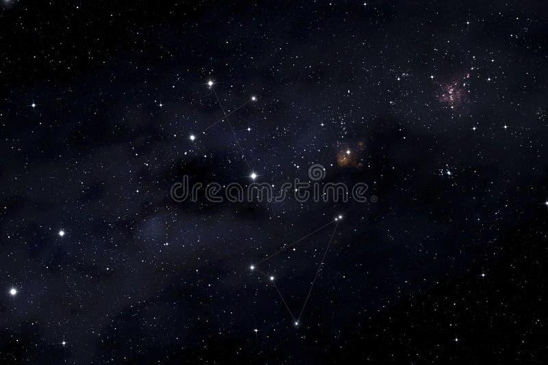 Cruz do sul e constelações do Musca imagem de stock royalty free