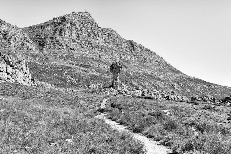 Cruz maltesa na fuga de caminhada de Bokveldskloof perto de Dwarsrivier monocromático fotografia de stock royalty free