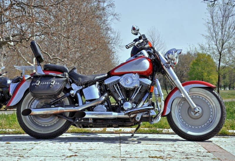 Cruzador da motocicleta fotografia de stock royalty free
