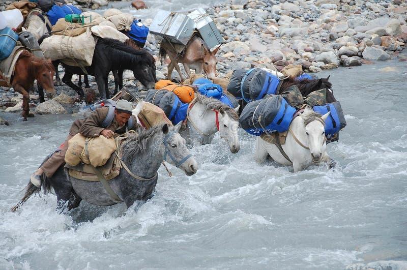 Cruzamento de rio imagens de stock