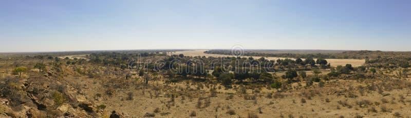 Cruzamento de rio de Limpopo a paisagem do deserto da nação de Mapungubwe foto de stock