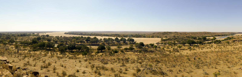 Cruzamento de rio de Limpopo a paisagem do deserto da nação de Mapungubwe imagem de stock royalty free