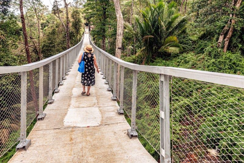 Cruzar el puente de ejecución en la colina Malasia de Penang del hábitat fotos de archivo libres de regalías