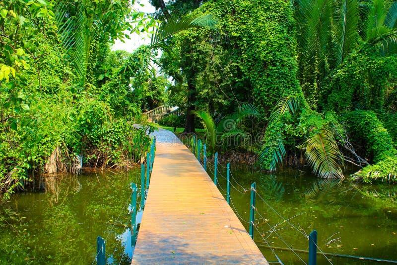 Cruzar el puente en una charca en el parque de Lumpini, Tailandia fotos de archivo libres de regalías