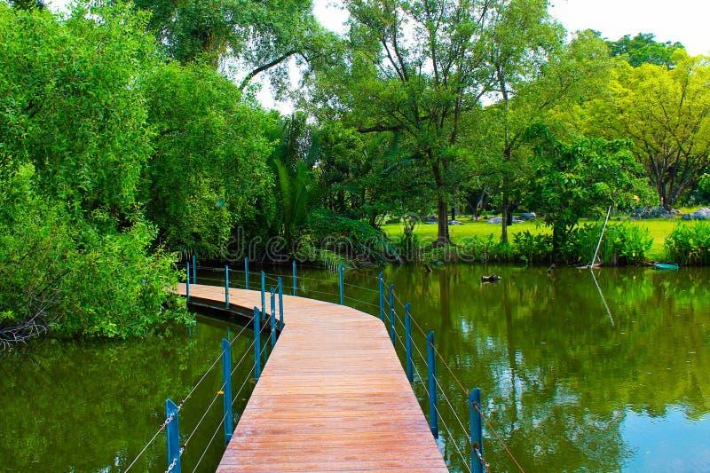 Cruzar el puente en una charca en el parque de Lumpini, Tailandia imagenes de archivo