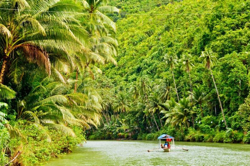 Cruzeiro do rio da floresta húmida foto de stock
