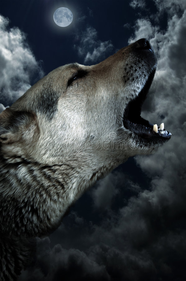 Cry For Eternity. Very Old Dog - howling at the moon