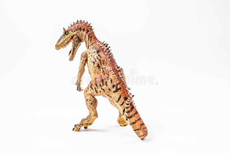 Cryolophosaurus, δεινόσαυρος στο άσπρο υπόβαθρο στοκ εικόνα με δικαίωμα ελεύθερης χρήσης