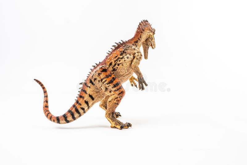 Cryolophosaurus, δεινόσαυρος στο άσπρο υπόβαθρο στοκ εικόνες