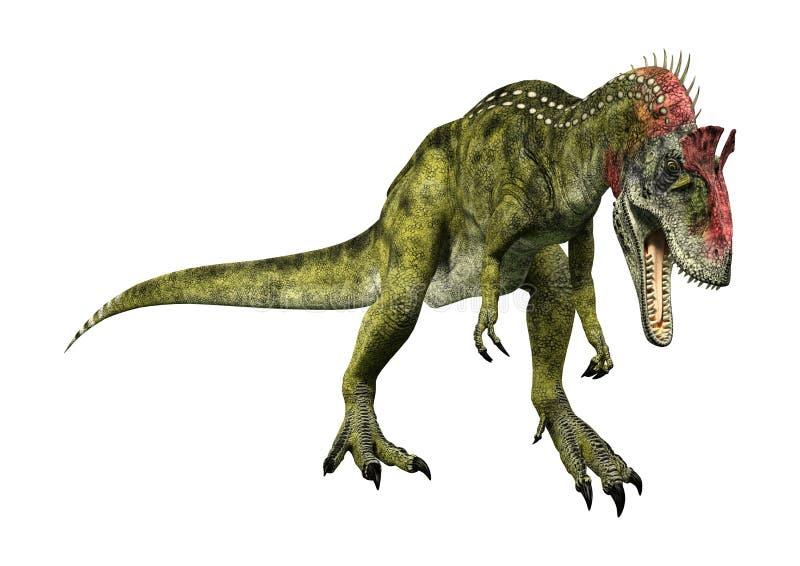 Cryolophosaurus de dinosaure du rendu 3D sur le blanc illustration de vecteur