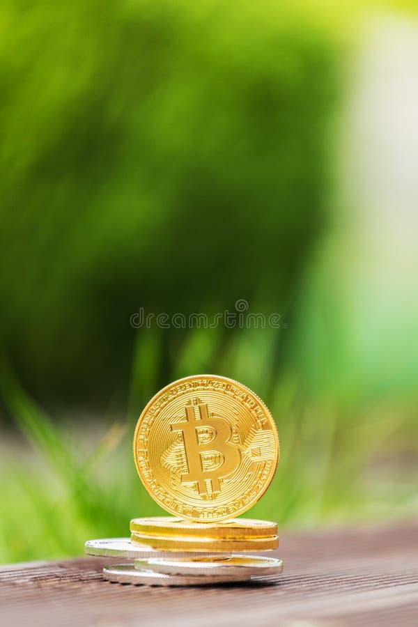 Crypto bitcoin de devise d'or et d'argent dans la perspective d'herbe verte photo libre de droits