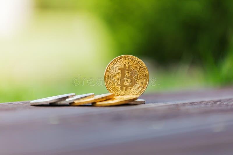 Crypto valutabitcoin för guld och för silver mot bakgrunden av grönt gräs royaltyfri foto