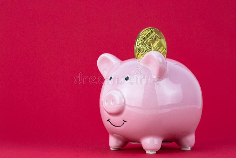 Cryptocurrency wewnątrz prosiątko bank Cryptocurrency inwestyci pojęcie fotografia royalty free