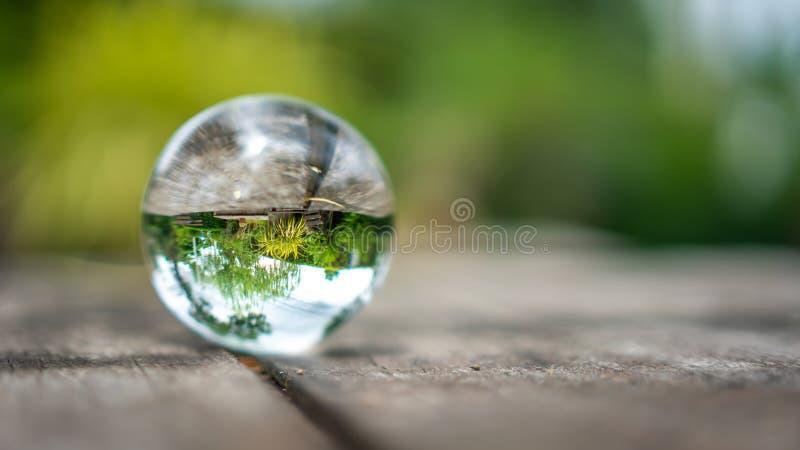 Crystal Ball With Green Tree royaltyfri fotografi