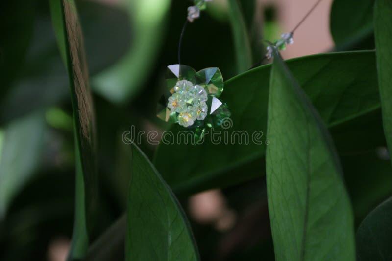 Crystal blomma för makro arkivfoton