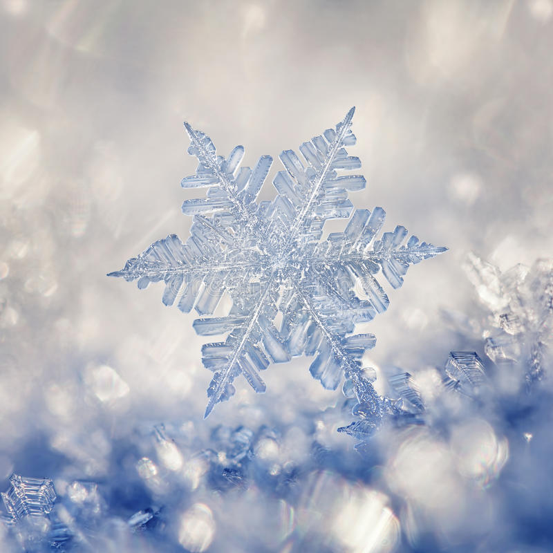 Crystal Blue Snowflake images stock