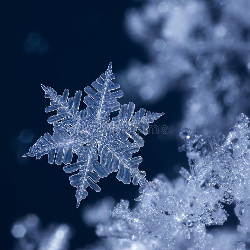 Crystal Blue Snowflake la nuit jpg photos libres de droits