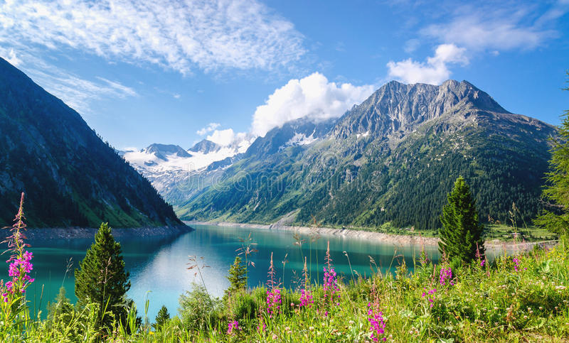 Crystal clear alpine lake Schlegeis, Austria. Crystal clear alpine lake Schlegeis with colorful flowers and mountain peaks in background, Schlegeis, Zillertal royalty free stock images