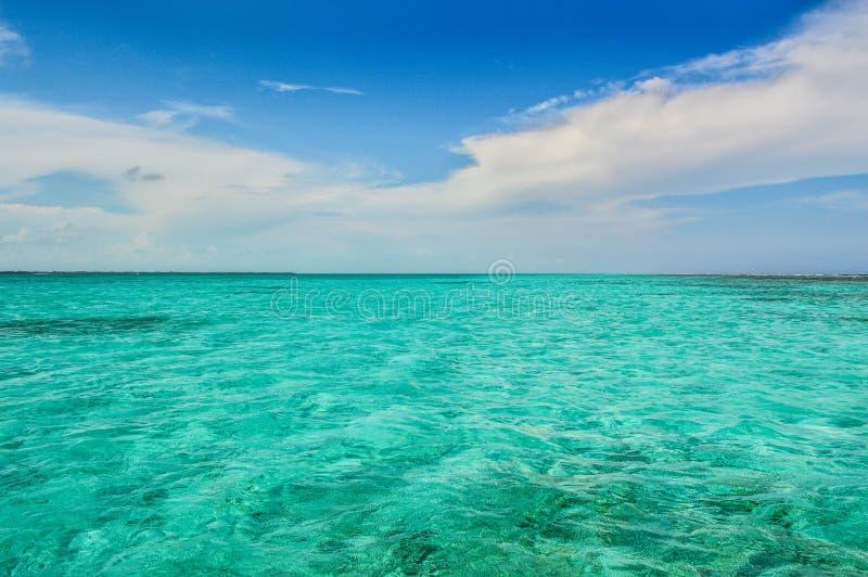 Crystal Clear Caribbean Waters, calafate de Caye, Belize imagem de stock royalty free
