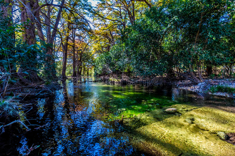 The Crystal Clear Frio River. Fall Foliage on the Crystal Clear Emerald Frio River, Deep in the Woods stock photos