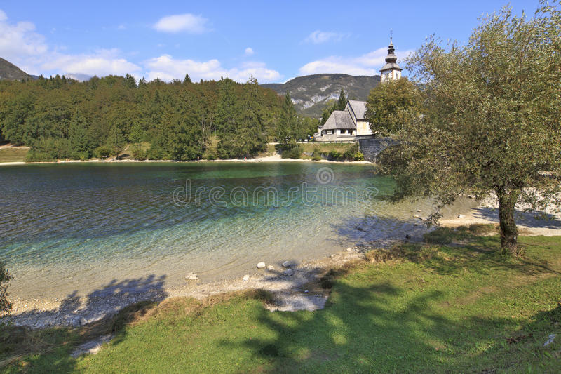 Download Crystal clear lake stock image. Image of slovenia, field - 24620433
