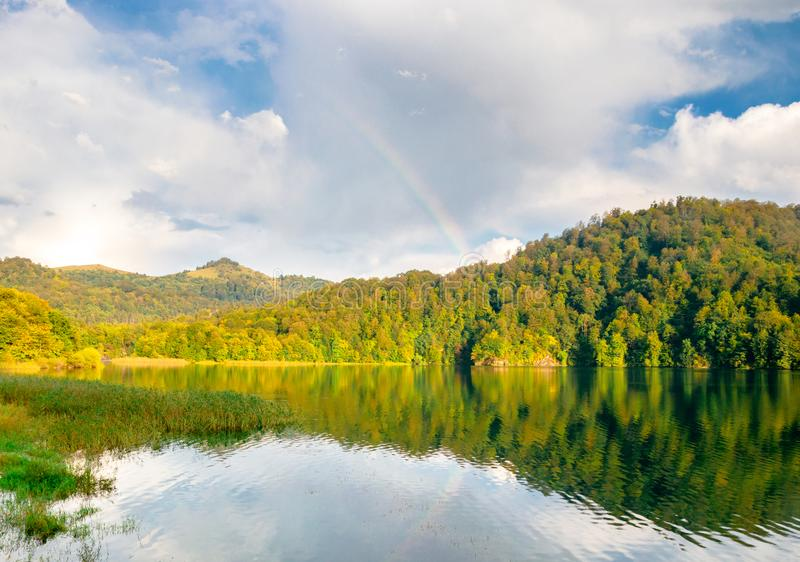 Crystal clear lake in the forest. Park reserve royalty free stock image
