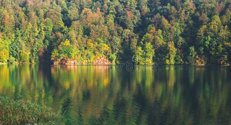 Crystal clear lake in the forest. Park reserve stock image