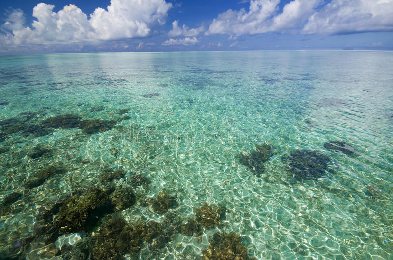 Crystal clear tropical island stock images