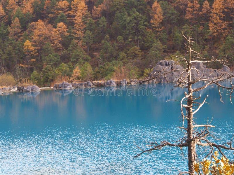 Crystal Clear Water på vägen till Jade Dragon Snow Mountain Tra royaltyfri foto