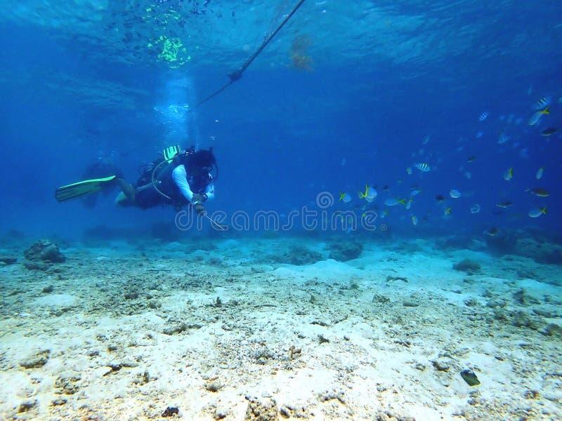 Crystal clear water while a scuba diver enjoying a leisure dive in Tunku Abdul Rahman Park, Kota Kinabalu. Sabah, Malaysia. Borneo. A diver enjoying a leisure stock images