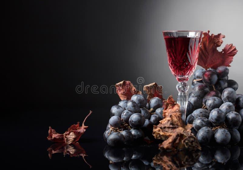 Crystal exponeringsglas av rött vin och druvor med torkade vinrankasidor royaltyfria bilder