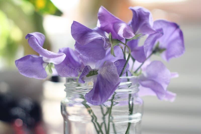 Crystal exponeringsglas för blå skönhetblomma arkivfoto