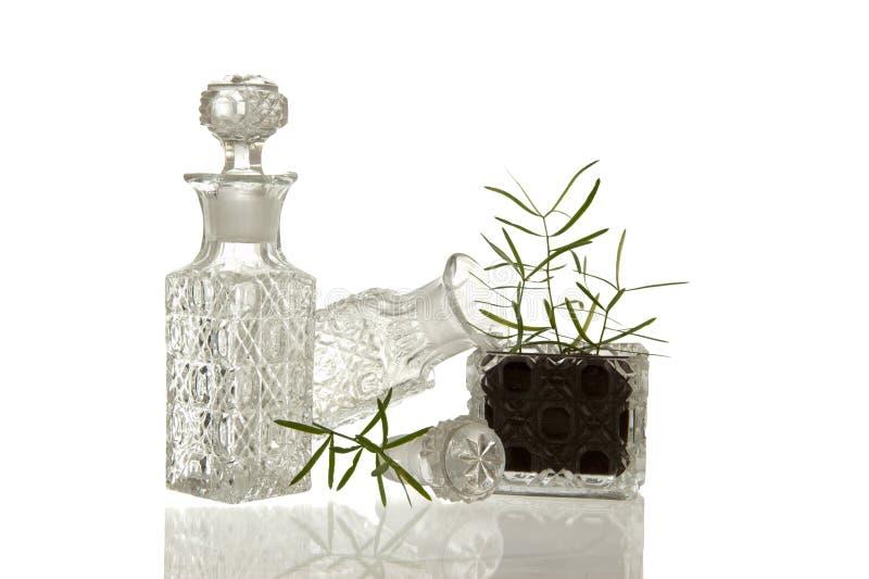 Crystal glasflaskor och växt royaltyfria bilder