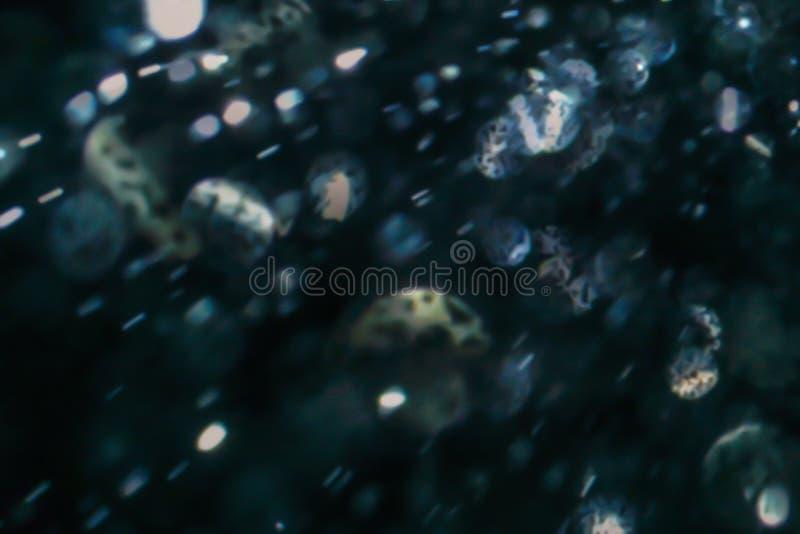 Crystal glitter blinking defocused light. Abstract bokeh light on black background stock images