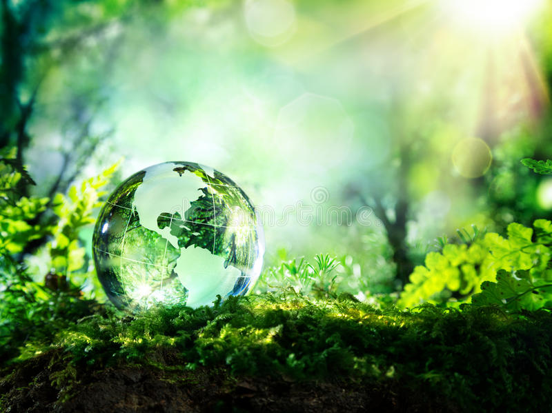 Crystal globe on moss in a forest stock images