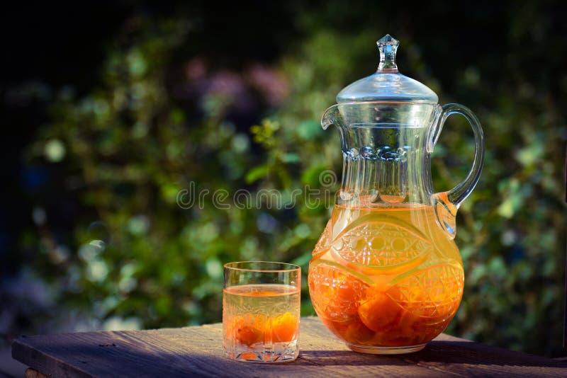 Crystal karaff och exponeringsglas med aprikoskompott royaltyfri fotografi