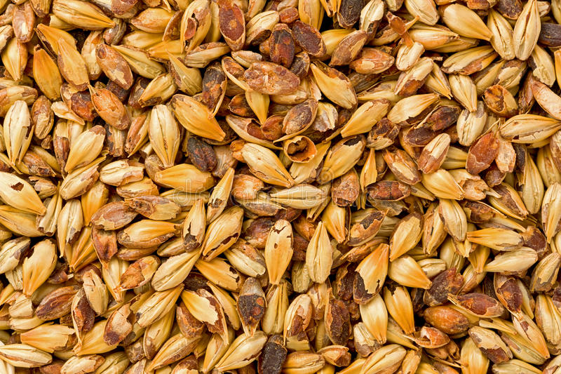 Crystal 40L Malt royalty free stock image