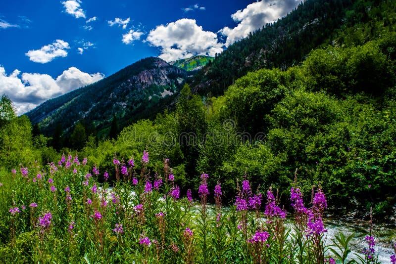 Crystal Mill en marbre, le Colorado images libres de droits