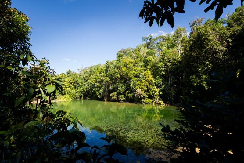 Crystal Pool National Park Krabi royalty free stock photos