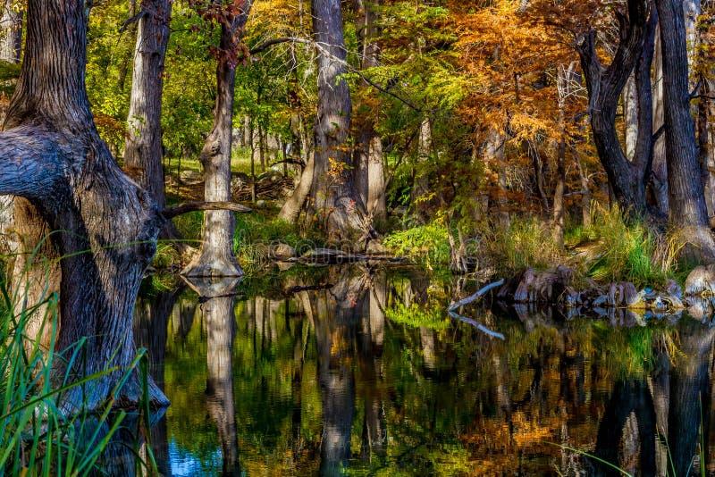 Crystal Reflections del follaje de otoño en Garner State Park, Tejas imagenes de archivo