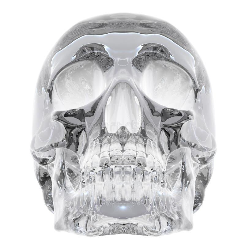 Crystal skull stock illustration
