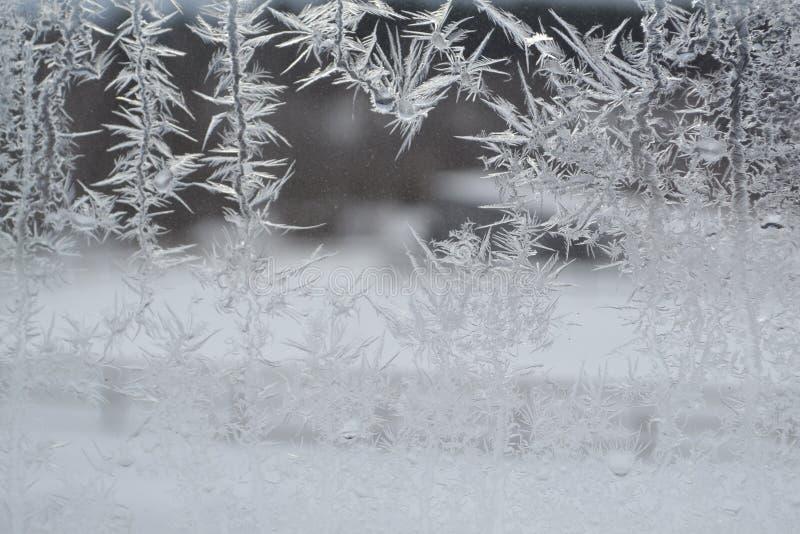 Crystal Snowflakes sur la fenêtre 10 image libre de droits