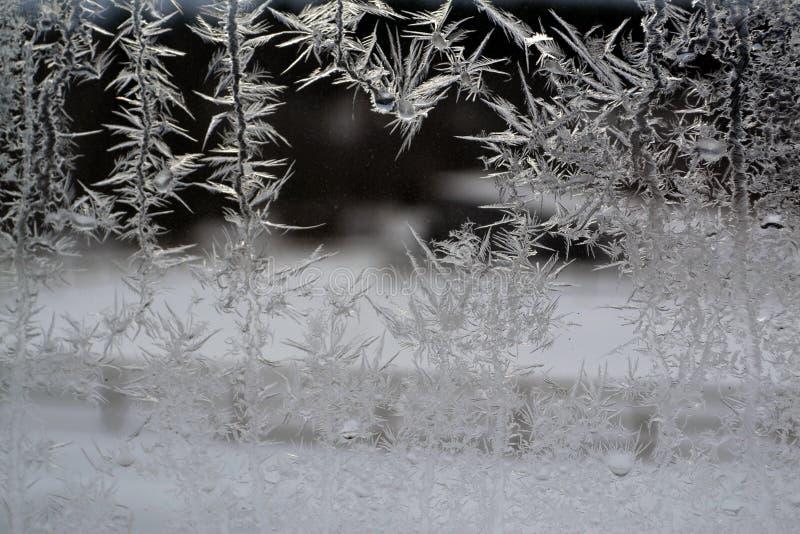 Crystal Snowflakes sur la fenêtre 18 photo libre de droits