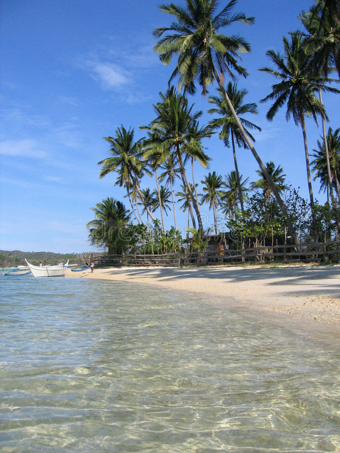 Download Crystal Waters Blue Sky White Beach Philippines Stock Photo - Image of coast, palm: 153658