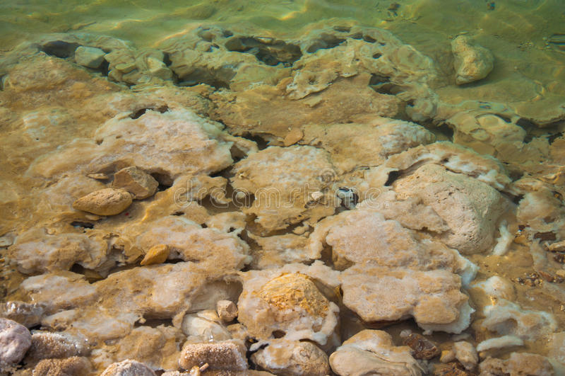 Crystallized salt of Dead Sea beach royalty free stock photography