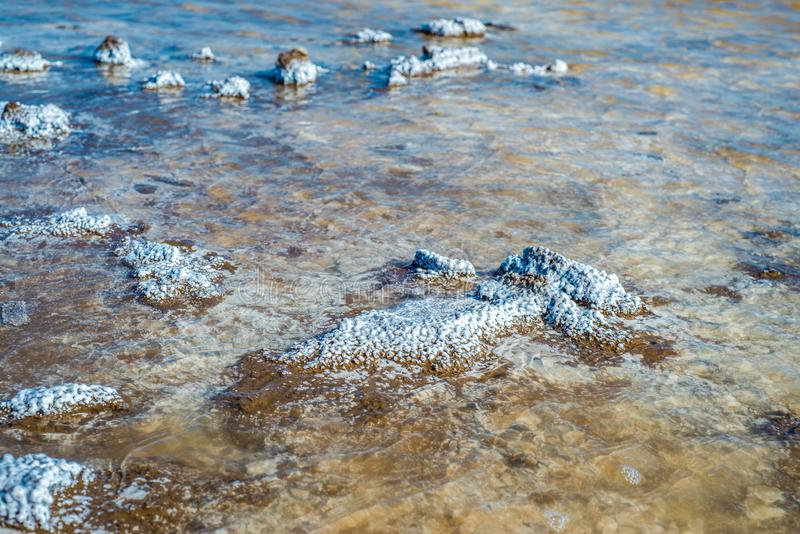 Crystals of natural salt in the lifeless hot terrain on the salt lake Baskunchak. Russia. Astrakhan region royalty free stock image