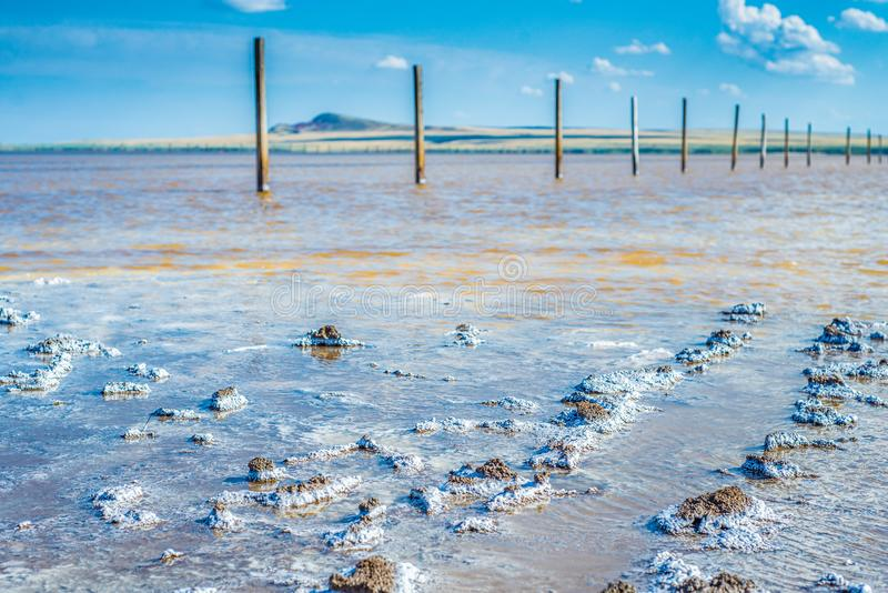 Crystals of natural salt in the lifeless hot terrain on the salt lake Baskunchak. Russia. Astrakhan region stock image