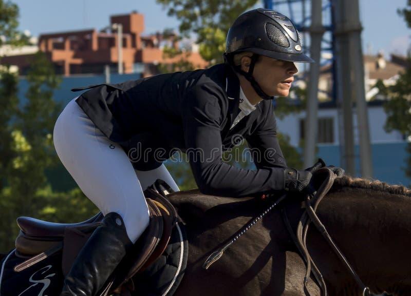 CSIO BARCELONA 2014 fotografia stock
